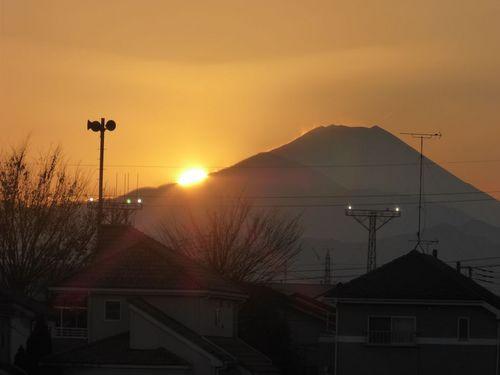 daiyafuji02.jpg