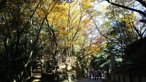 takao20171127-03.jpg