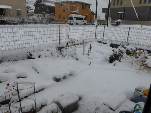 yuki20160118-01.jpg