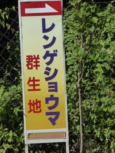 rensyou-01.jpg
