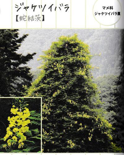 takaohon-01.jpg