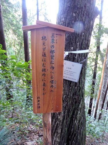 takaoume-03.jpg