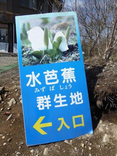 utukisinomori-02.jpg